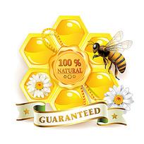 黄色蜂巢蜜糖蜜蜂时尚漫画