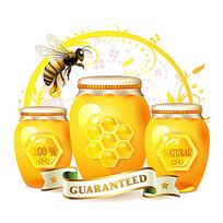 蜜糖罐子和蜜蜂时尚漫画