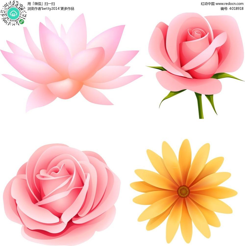 手绘花朵韩国插画