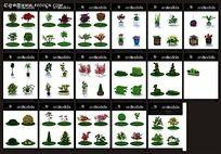 3D花卉树木模型素材max