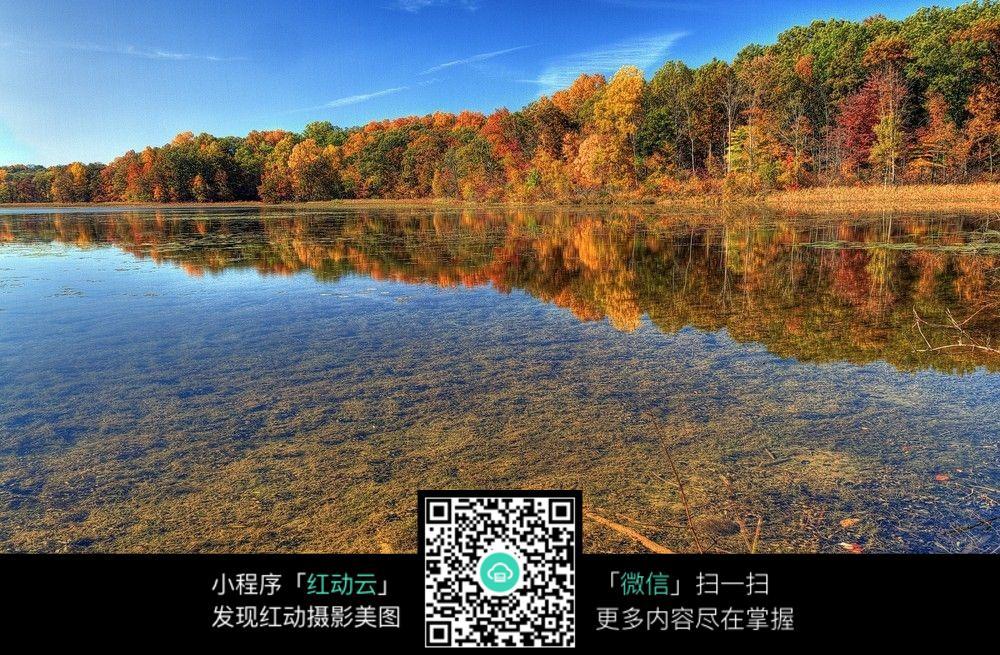 免费素材 图片素材 自然风光 自然风景 秋季树林美景  请您分享: 素材