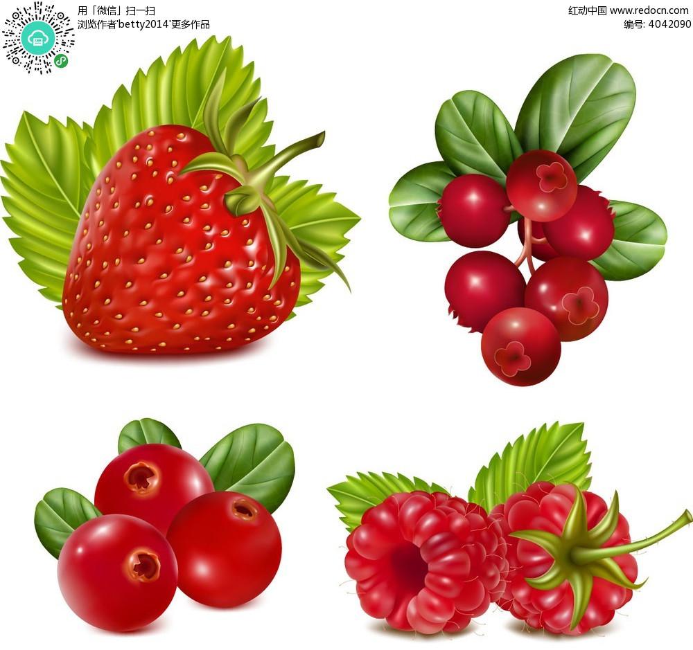 手绘美味水果矢量素材