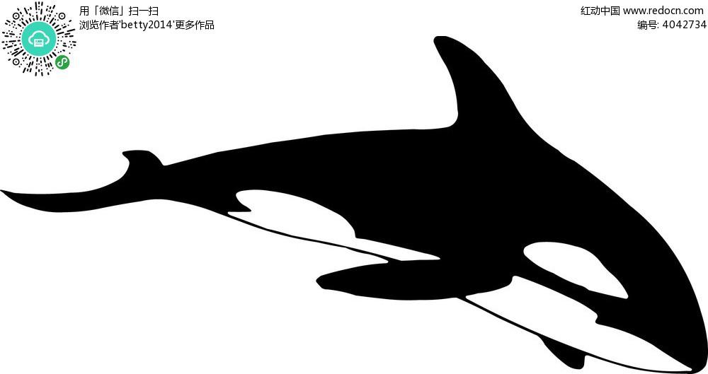 手绘黑白鲸鱼矢量图形eps免费下载_水中动物素材
