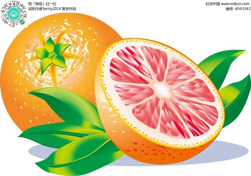 橙子手绘插画图形