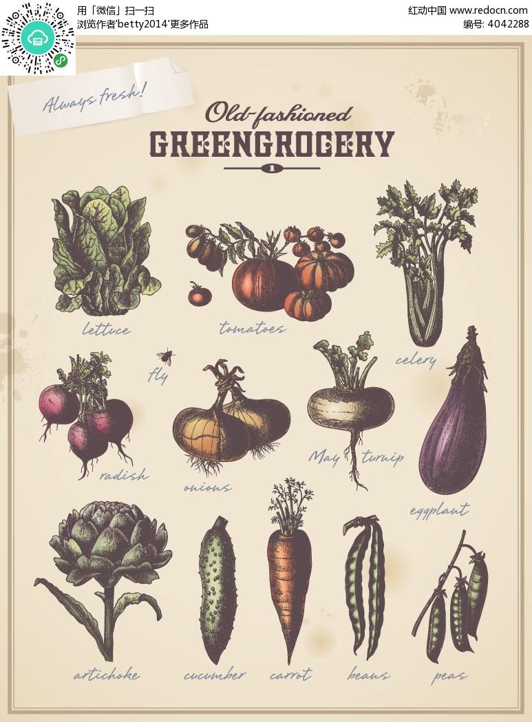 蔬菜手绘线描图形eps免费下载_蔬菜水果素材