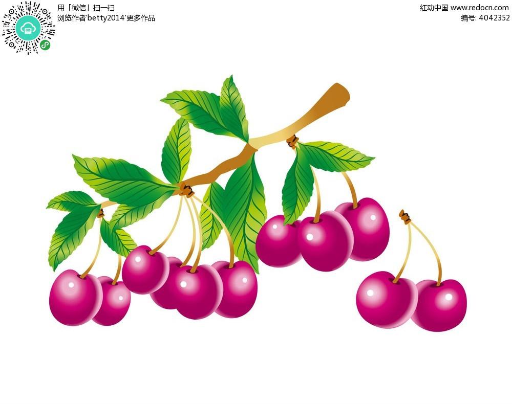 樱桃手绘插画图片