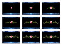 玫瑰花双向生长动态视频素材