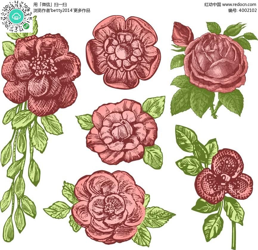 手绘花朵和叶子矢量素材