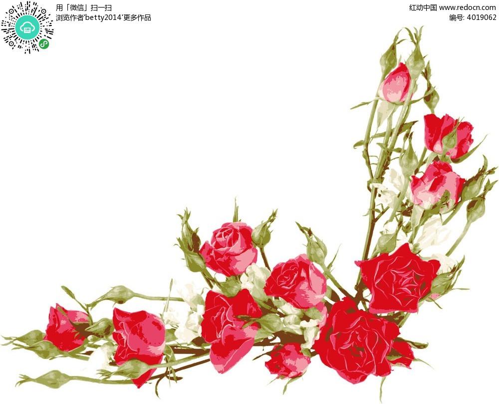 矢量玫瑰花边框