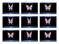 蝴蝶扇动翅膀动态视频