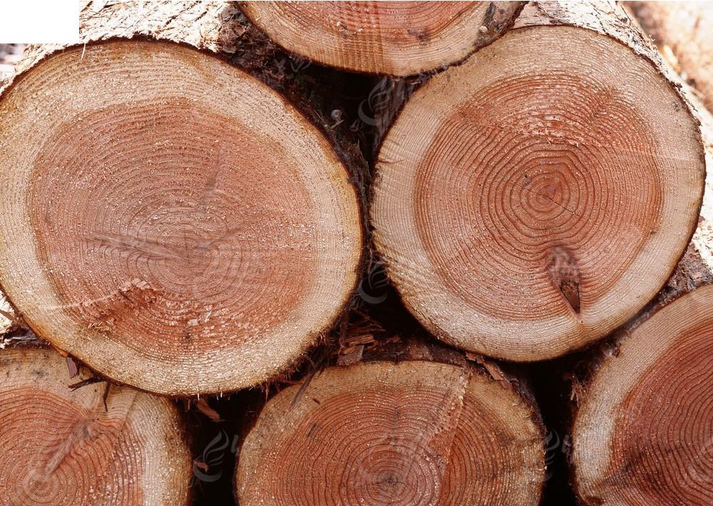 木色图片 纹理美 木头纹理
