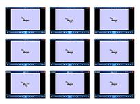 红蜻蜓动画视频