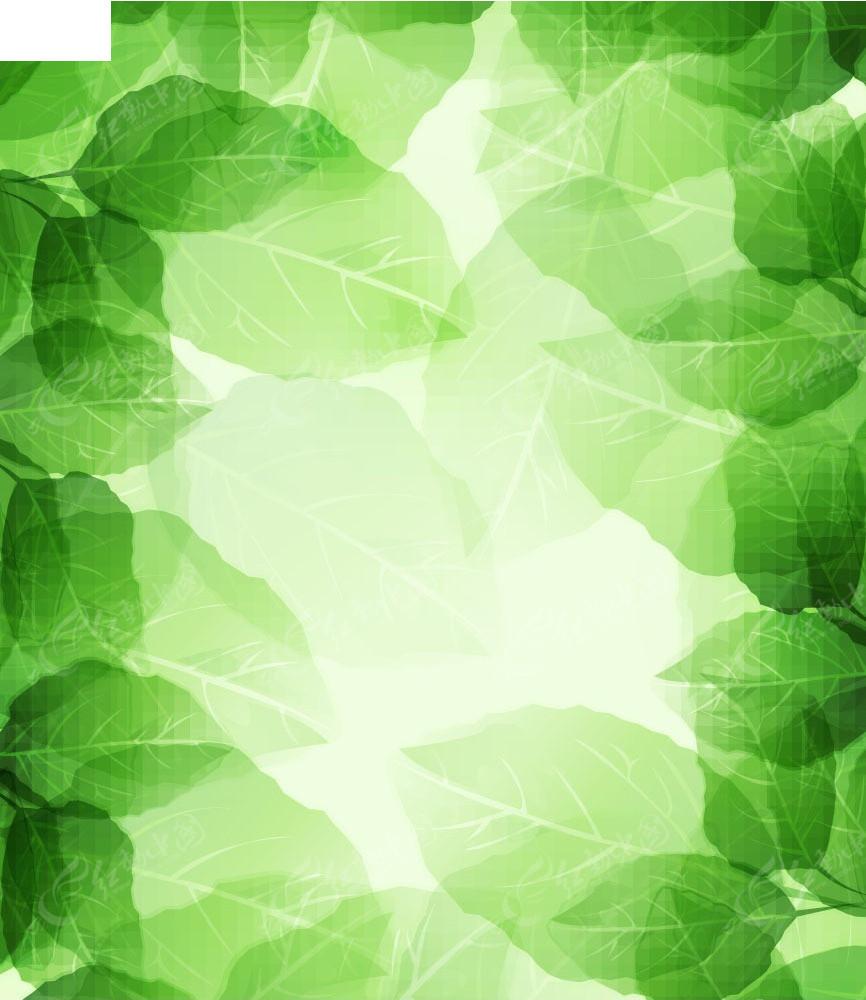 漂亮的绿叶背景矢量素材