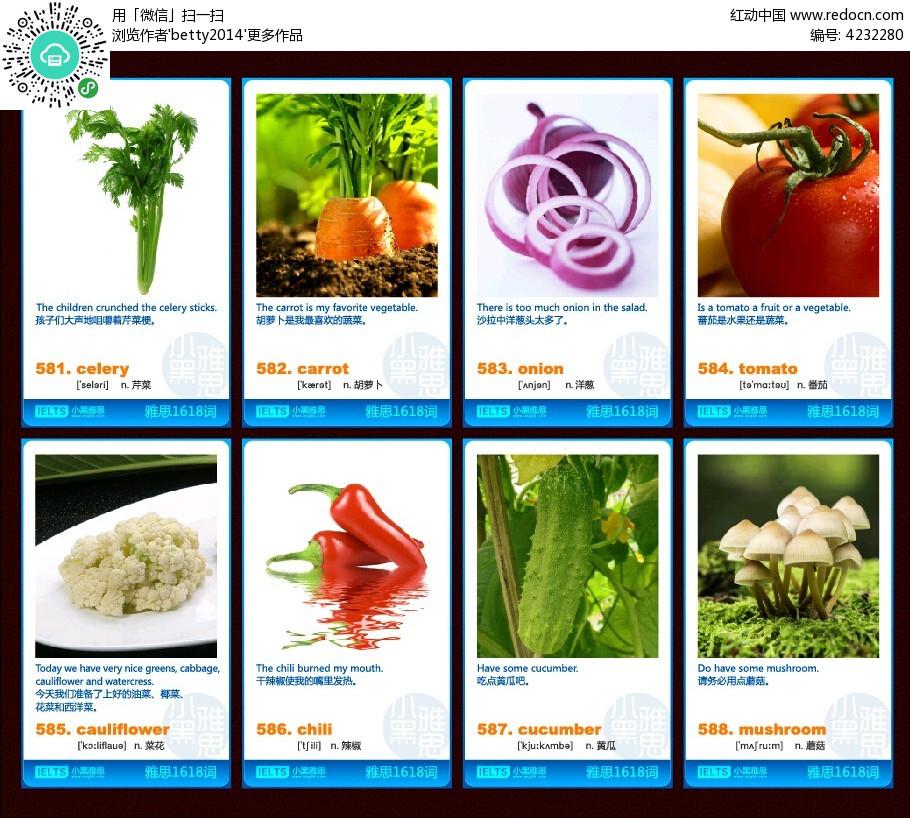 蔬菜英文单词卡片