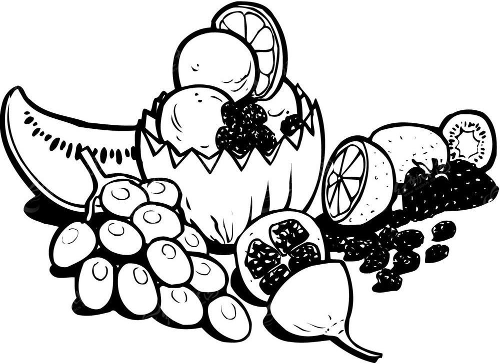 水果手绘素描矢量