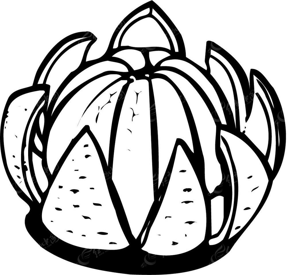 水果手绘图片简易画