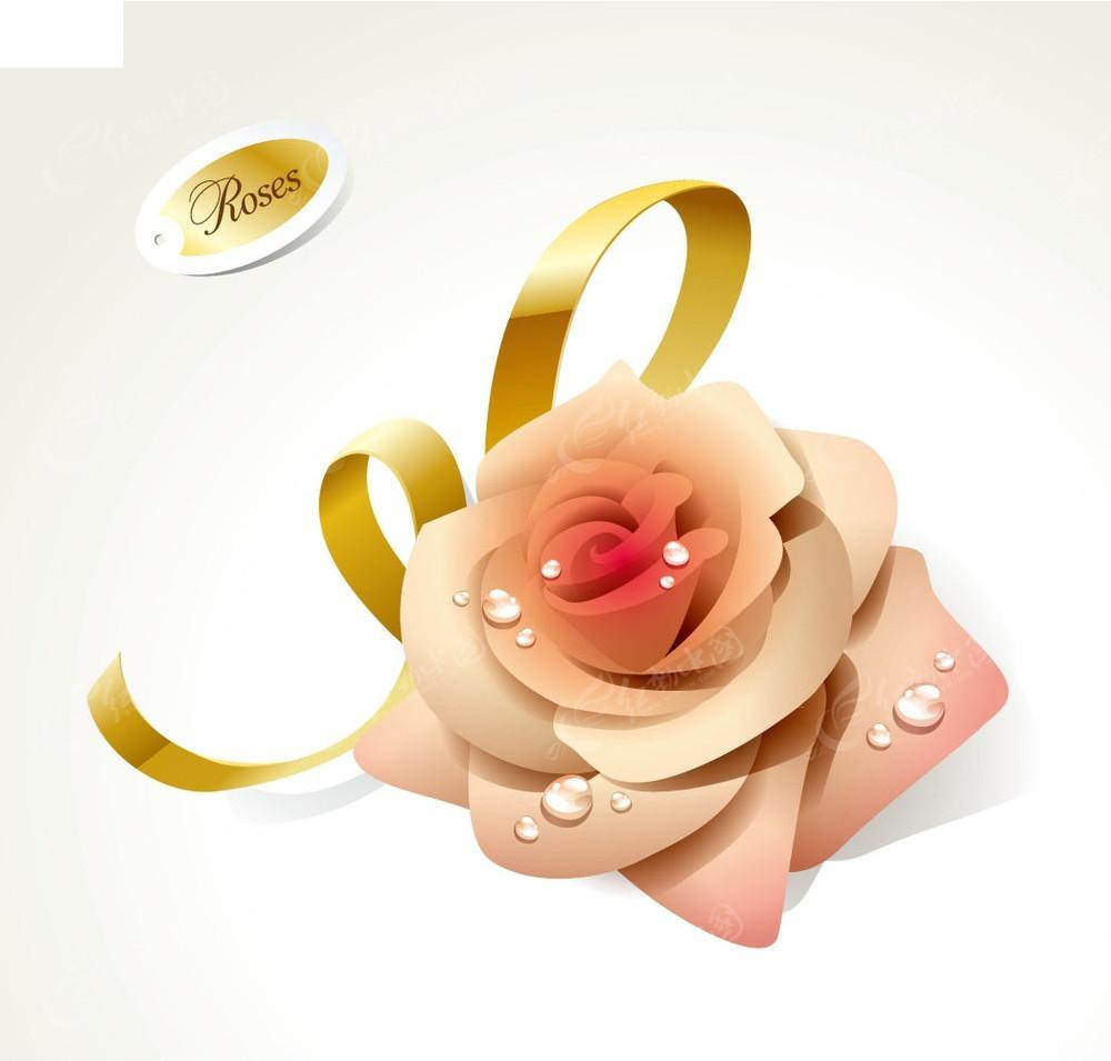手绘玫瑰花水滴素材