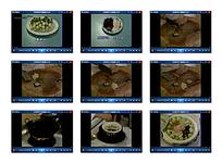 炖菜核烹饪视频
