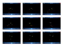 彩色蜻蜓飞动动画视频