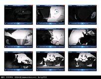3D兔子动画视频