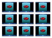 动画Flash标志视频