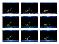 绿叶花纹动画视频