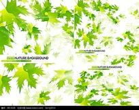 绿色枫叶矢量背景