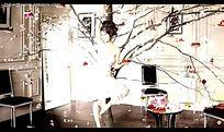 国外美女家居装饰树视频