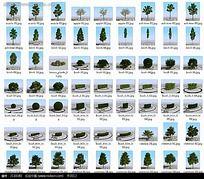 3D植物模型素材集合max