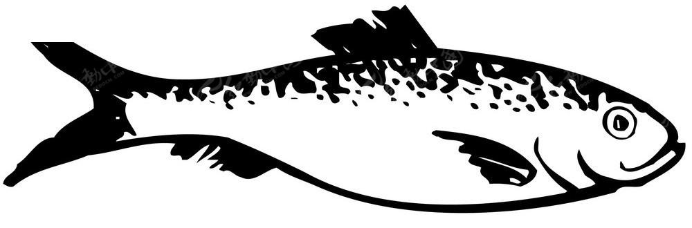 手绘鱼图形图片