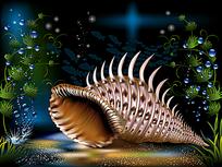 海底长角的海螺