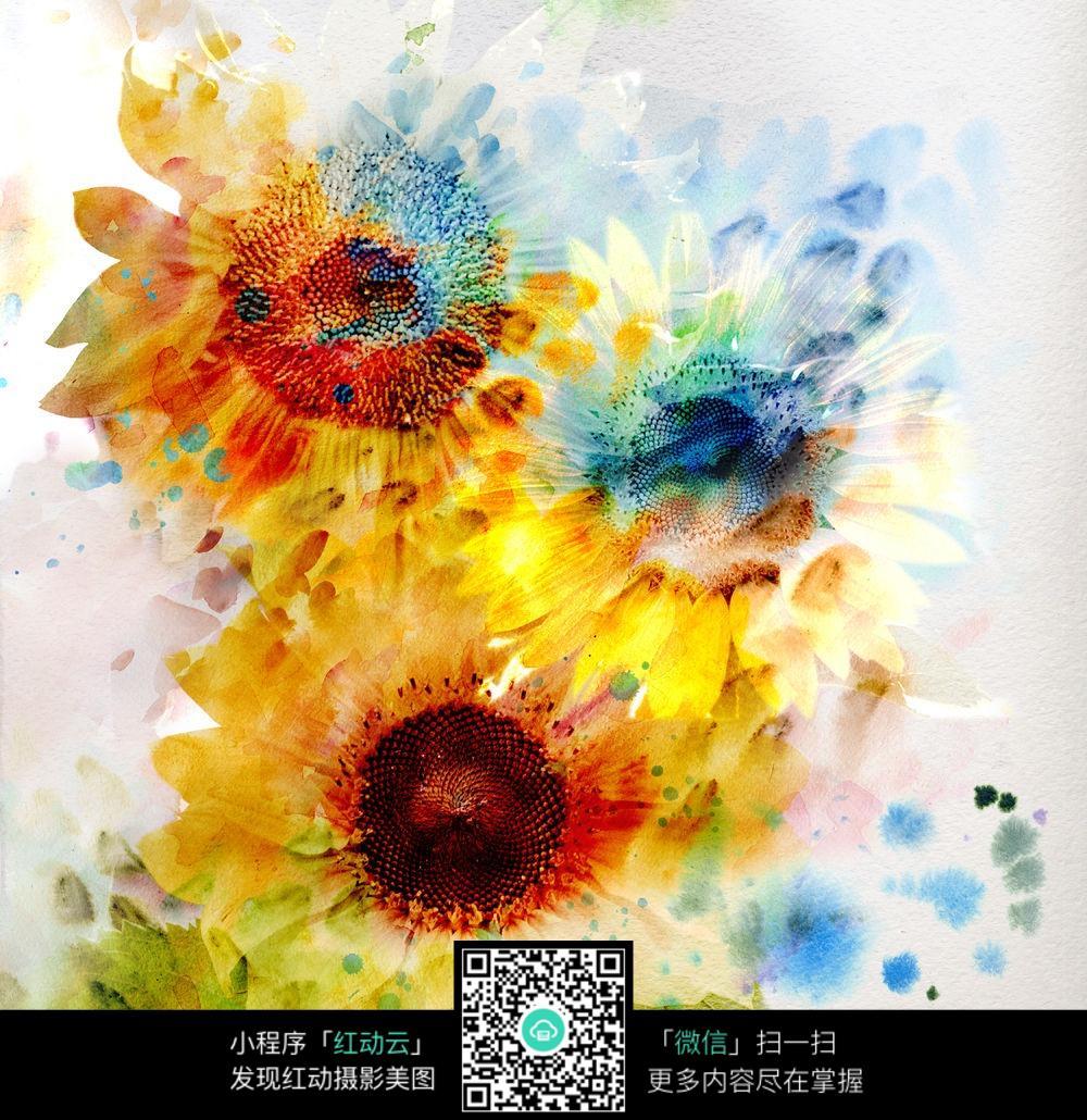 插画手绘花朵彩色图案图片