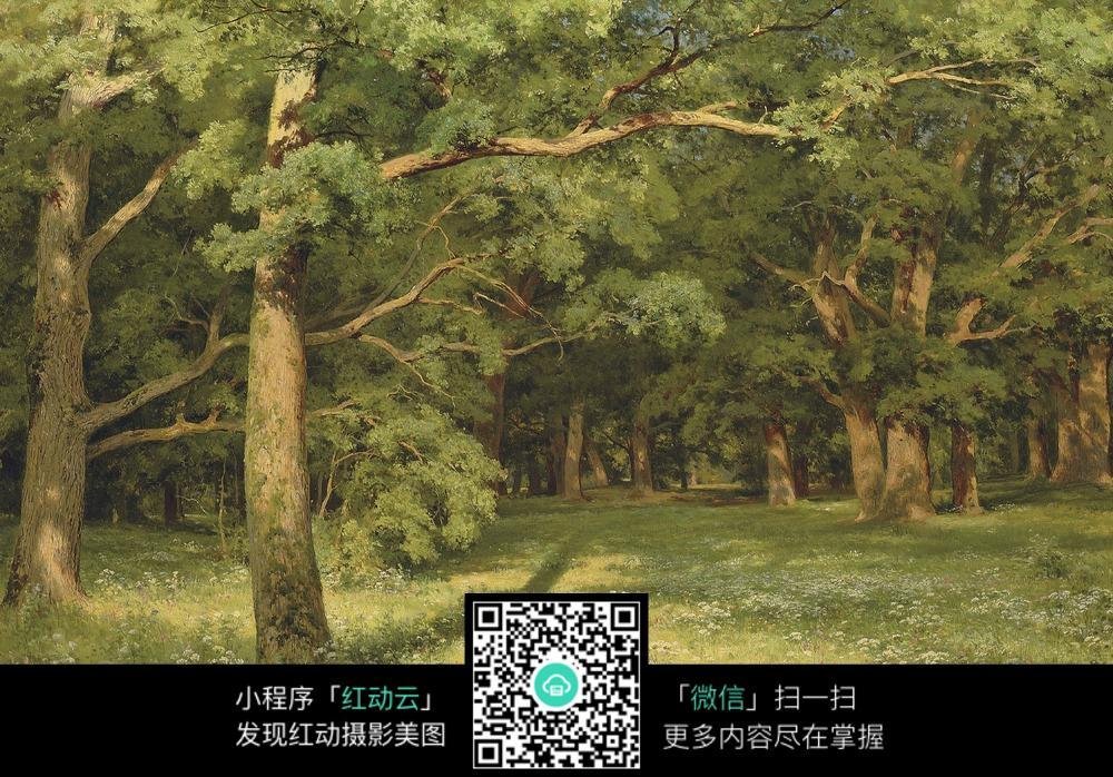 大自然青草树木装饰画图片  青草树林 树木 大自然风景 国外古典油画