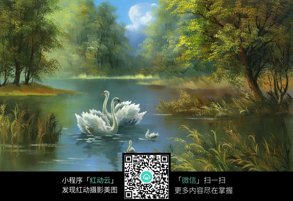湖水上的天鹅油画