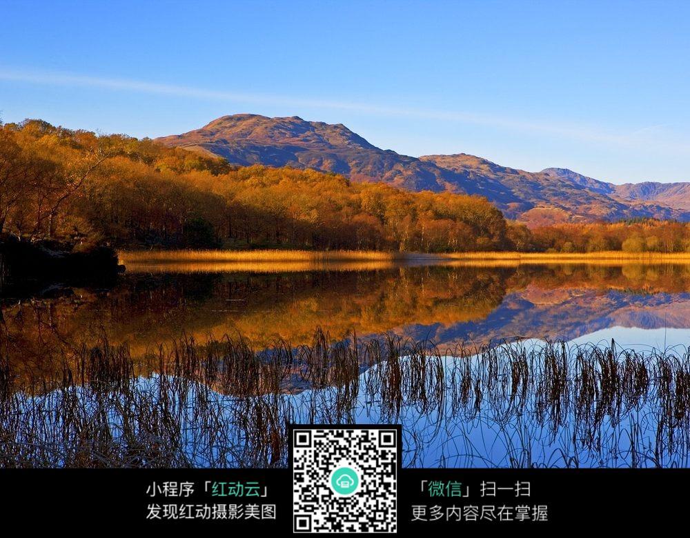 免费素材 图片素材 自然风光 自然风景 镜面湖泊上的秋季树木  请您分