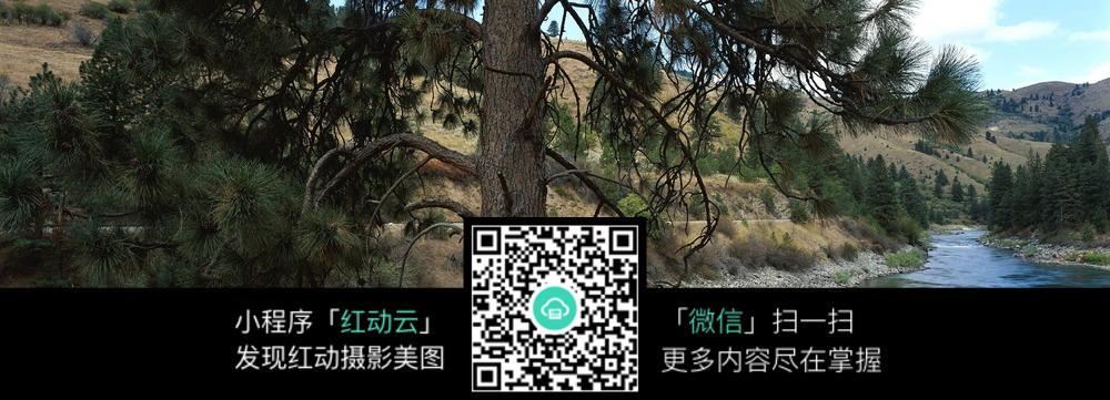 河水 山路 松树 蓝天白云 群山 摄影图片 图片素材 自然风光 风景图片