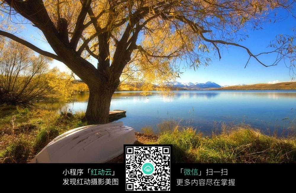 免费素材 图片素材 自然风光 自然风景 树下的小船