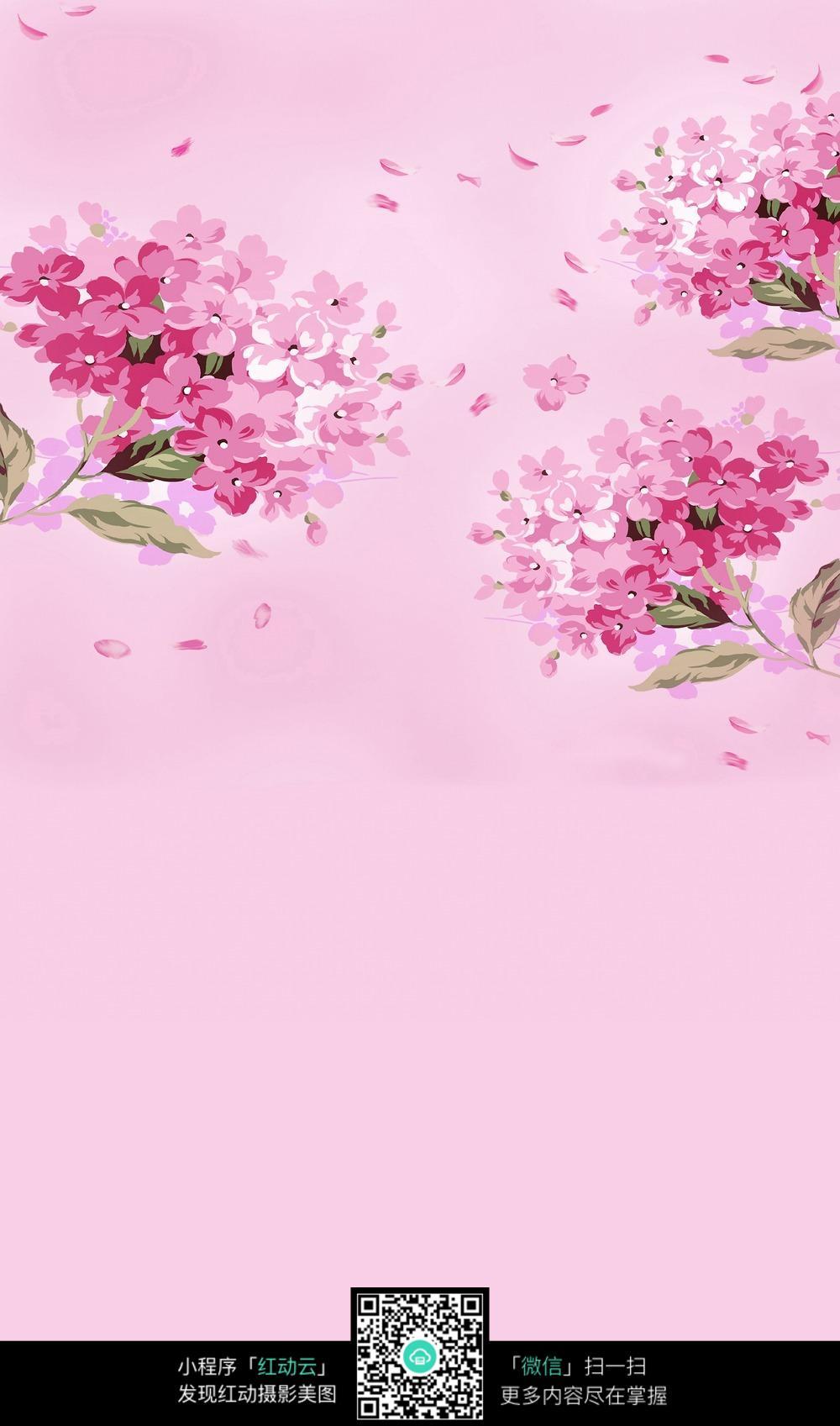 粉色花卉背景素材图片
