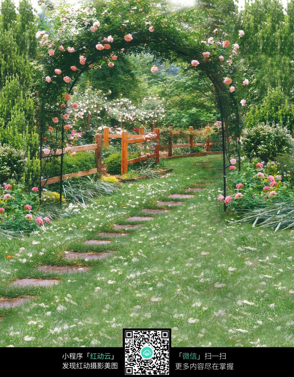 花园 图片