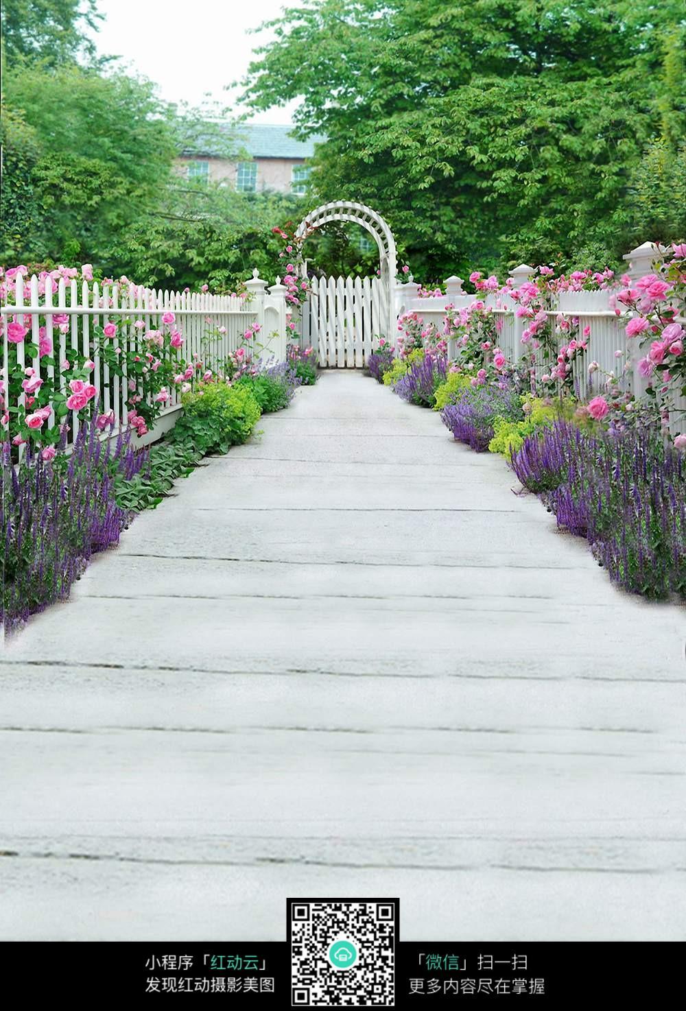 花园小道图片_数码背景图片