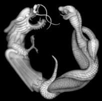 龙与蛇屏风图案雕刻
