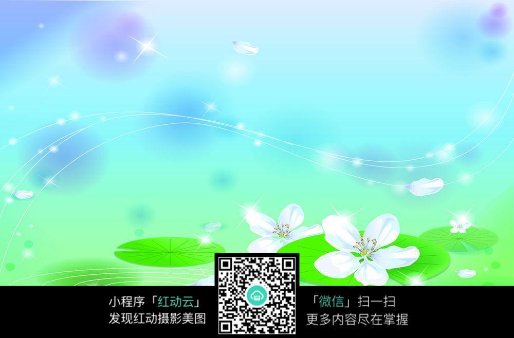 白花与荷叶背景图图片