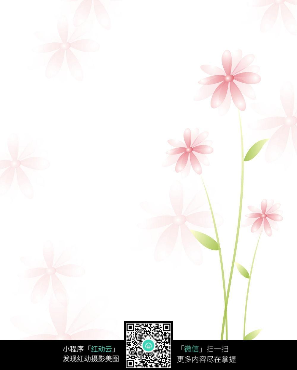 白色小花背景图