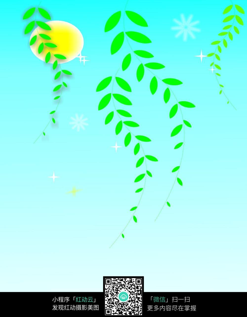 春天柳叶背景图图片