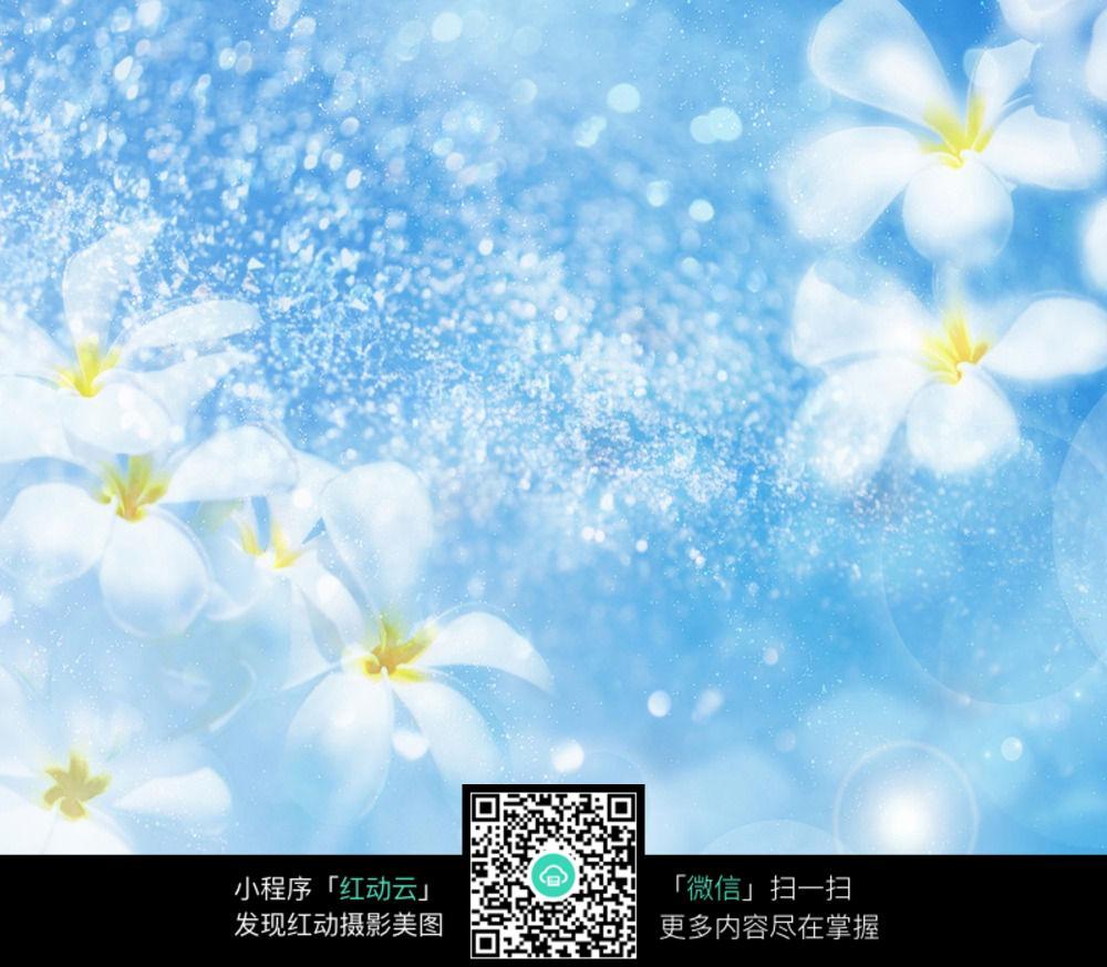 蓝色温馨小花背景图图片