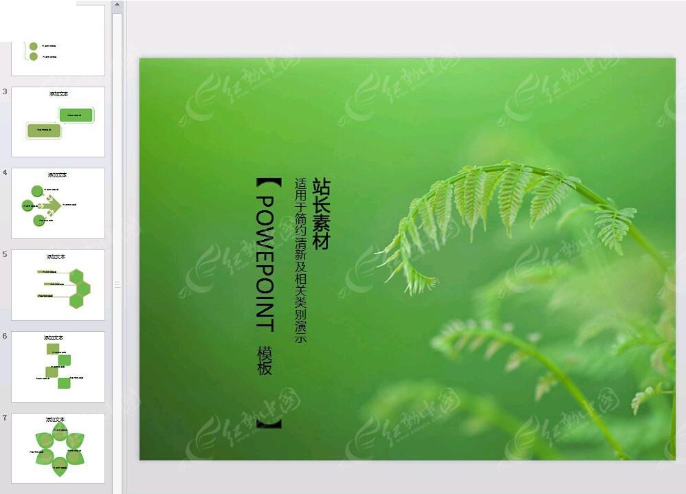 蕨类植物背景ppt