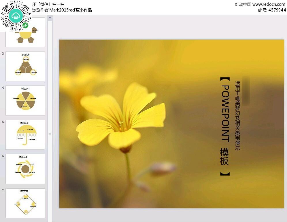 野菊背景ppt素材免费下载_红动网图片