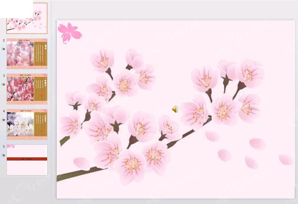 美丽的植物图片ppt