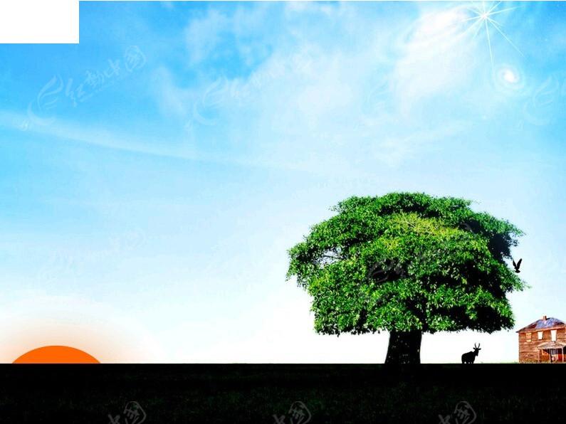 大树背景ppt