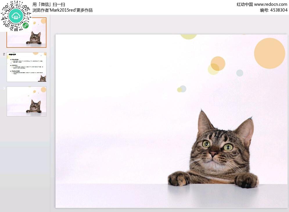 可爱小猫咪幻灯片模板